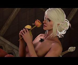 The Witcher: A Romantic..