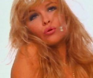Pamela Anderson old..